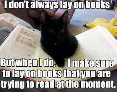 lay on books
